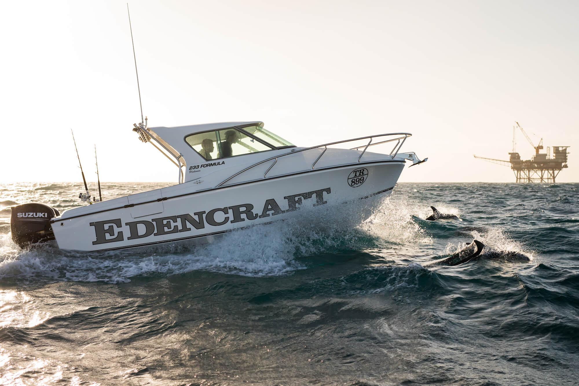Dolphins swim alongside an Edencraft 233 Formula Platinum offshore