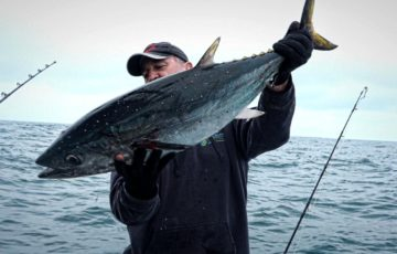 Fisherman inspects a bluefin tuna he's just caught